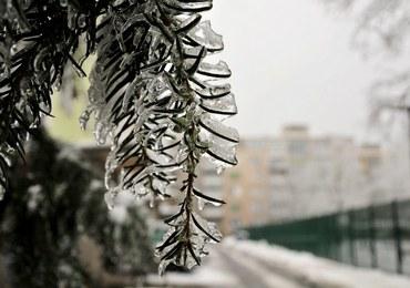 Słowenia bezsilna w walce z zimą
