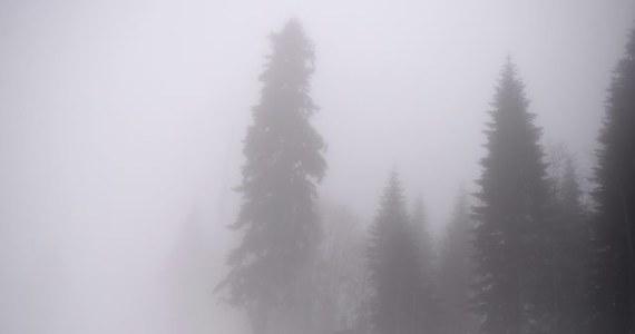 Nie mgła, a zmieniający się wiatr, jest największą zmorą skoczków narciarskich. Zaplanowany na dzisiejszy wieczór konkurs drużynowy na igrzyskach w Soczi zostanie jednak prawdopodobnie przeprowadzony bez przeszkód.