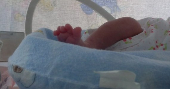 Prokuratorzy z Wrocławia zabezpieczyli dokumentację dotyczącą legalnej aborcji, po której lekarze zdecydowali o ratowaniu życia dziecka. Maluch urodził się bowiem 200 gramów cięższy, niż zakładano, i samodzielnie oddychał.  Trafił na oddział intensywnej terapii.