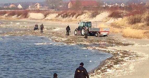 Nawet tygodniami może trwać usuwanie z plaż Półwyspu Helskiego styropianu. Morze wyrzuciło tam ogromne ilości tego materiału. W Urzędzie Morskim w Gdyni nie mają wątpliwości, że to elementy zniszczonej przystani rybackiej, która była budowana w Mechelinkach.