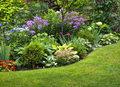 Jak dbać o ogródek
