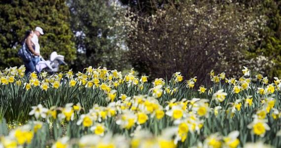 Ostatni dzień marca upłynie pod znakiem korzystnej aury. Słońce ma nam towarzyszyć do końca dnia, deszcz raczej nie jest spodziewany, a temperatura będzie się wahać od 12 st. Celsjusza do nawet 18 st. Celsjusza. Prognozy na początek kwietnia również są dobre. Co prawda, zrobi się nieco chłodniej i miejscami popada deszcz, ale chwil ze słońcem również nie zabraknie.