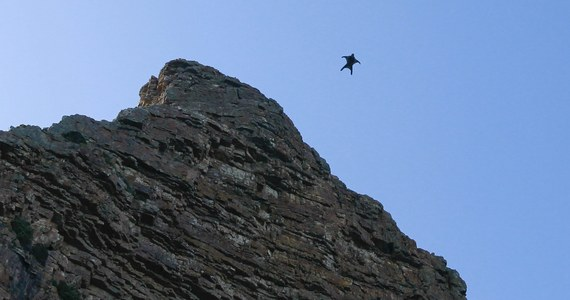 Troje sportowców ekstremalnych zginęło w miniony weekend w Oberlandzie Berneńskim - poinformowały dzisiaj szwajcarskie media. Wśród nich był znany Francuz Ludovic Woerth. Zginął razem z Nowozelandczykiem Danem Wicarym, uprawiając wingsuit, czyli skok z samolotu (lub śmigłowca) w wyposażonym w spadochron specjalnym kombinezonie umożliwiającym szybowanie.