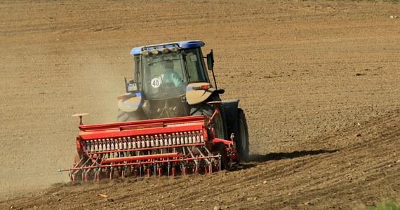 Zespół Ekspertów Agencji Rynku Rolnego przewiduje, że po sezonowym spadku cen pszenicy podczas żniw, we wrześniu zboże to podrożeje i jego cena może być o 5-15 proc. rok temu. Obecnie pszenica konsumpcyjna kosztuje 800-830 zł za tonę.