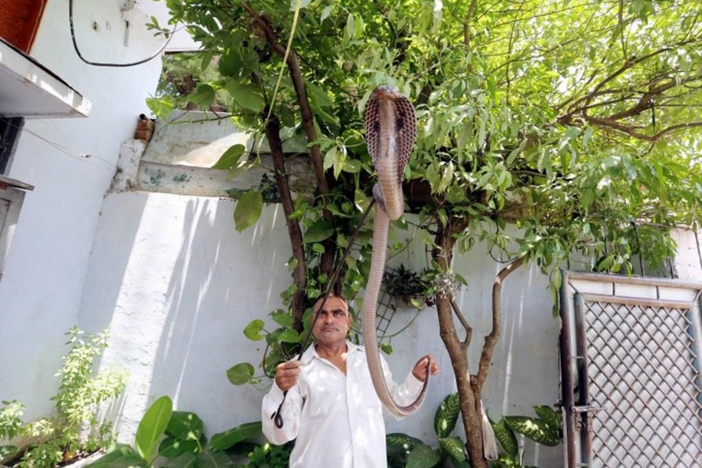 Sanjeev Gupta (EPA)