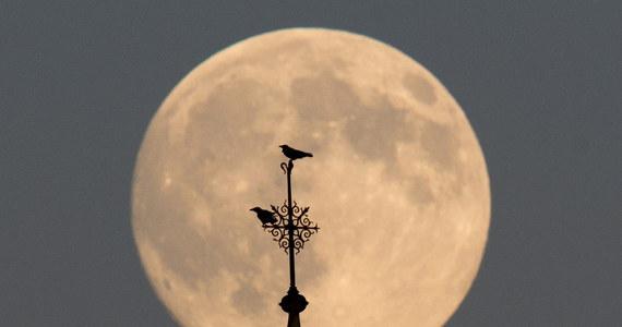 A może romantyczna kolacja przy świetle Księżyca? Dzisiaj będzie do tego idealna okazja, ponieważ Księżyc wyda nam się o wiele większy.