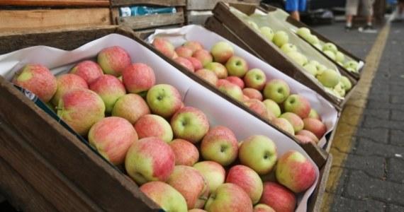 Unijne rekompensaty związane z rosyjskim embargiem mogą trafić wyłącznie do producentów polskich jabłek - dowiedziała się nasza korespondentka w Brukseli Katarzyna Szymańska-Borginion. Taki może być plan Komisji Europejskiej, której przedstawiciele spotkali się w czwartek po raz pierwszy z polską delegacją.
