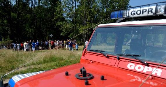 W Bieszczadach w rejonie Olszanicy niedźwiedź zaatakował dwóch ratowników GOPR-u. Mężczyźni szukali zaginionego 60-latka.