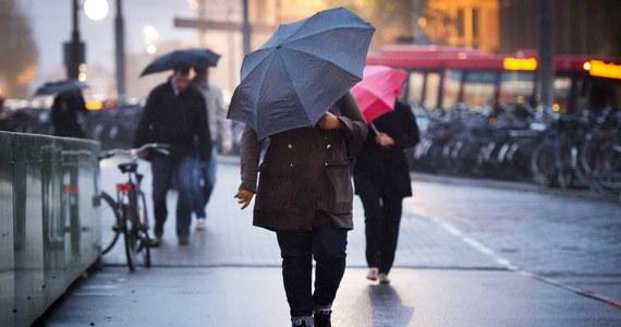 Prognozy są mało optymistyczne. Najbliższe dni upłyną pod znakiem opadów deszczu i znacznego ochłodzenia. W środę temperatura nie przekroczy w ciągu dnia 12 st. Celsjusza, w czwartek 11 st. Celsjusza, a w piątek 7 st. C. W nocy spodziewane są przygruntowe przymrozki. Dodatkowo w górach popada deszcz połączony ze śniegiem i śnieg. Taka niekorzystna tendencja utrzyma się co najmniej przez kilka dni.