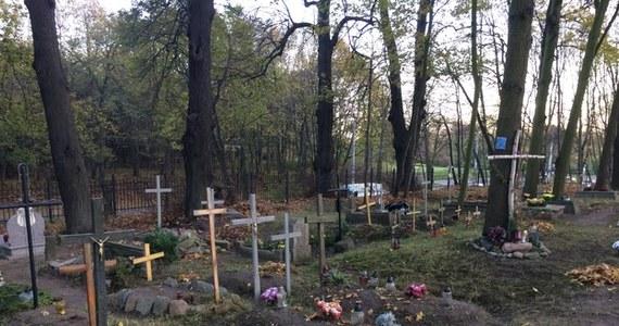 Do lat 50. pochowano tam co najmniej 300 osób, w dużej części dzieci. To niemal zupełnie nieznany trójmiejski cmentarz. Chodzi o niewielką nekropolię położoną w obrębie Kolibek w Gdyni Orłowie. Dokładniej na pasie zieleni oddzielającym dwie jezdnie głównej arterii Trójmiasta. Wielu mieszkańców nie ma pojęcia o istnieniu cmentarza, choć codziennie przejeżdżają obok niego tysiące samochodów.