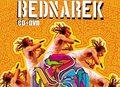 Bednarek: DVD z Przystanku Woodstock 2013