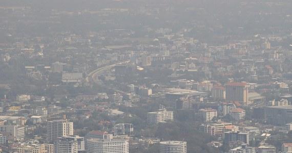 Jedynie przez 6 dni lutego w Warszawie nie zostały przekroczone dzienne dawki zapylenia - poinformował Greenpeace. Ekolodzy i eksperci przekonują, że podobnie jest w innych częściach kraju, a zanieczyszczenia powietrza przyczyniają się do licznych chorób.