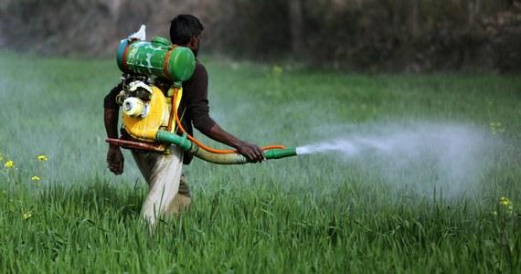 """Międzynarodowa Agencja Badań nad Rakiem (IARC) poinformowała, że pięć popularnych pestycydów i herbicydów zawierających glifosat i stosowanych w uprawach przemysłowych jest """"prawdopodobnie rakotwórczych"""". Wyniki badań w tej sprawie zostały opublikowane w internetowym czasopiśmie medycznym wyspecjalizowanym w onkologii """"Lancet Oncology"""""""