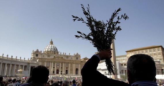 Gałązki oliwne, którymi na Niedzielę Palmową zostanie udekorowany plac świętego Piotra, zostały przewiezione do Watykanu z Apulli w specjalnej, zaplombowanej ciężarówce. Takie nadzwyczajne środki ostrożności podjęto w związku z bakterią, która dziesiątkuje rośliny.