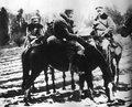 10 kwietnia 1917 r. Cesarz próbuje stworzyć Polnische Wehrmacht