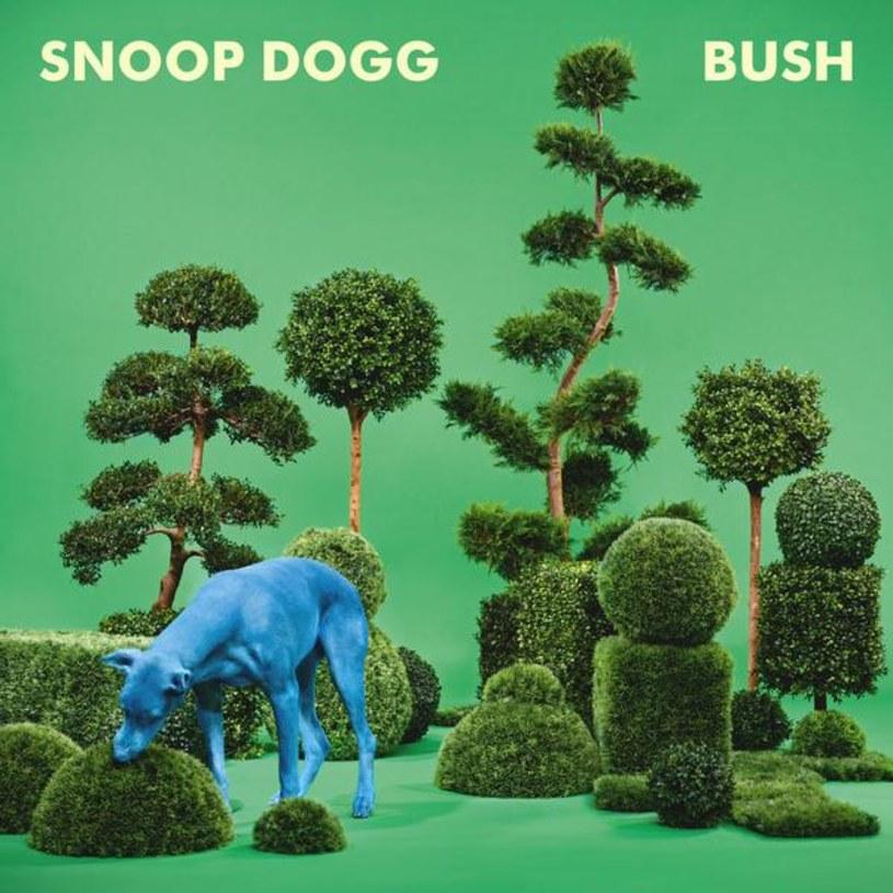 Dłuży ci się czas? Nie zaszkodzi zabić go trochę z nowym Snoopem - przyjemną, zupełnie nieobowiązkową płytą sytych profesjonalistów.