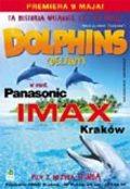 Delfiny w IMAX-ie