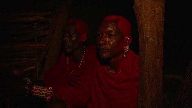 Masajowie – autochtoniczny lud zamieszkujący Kenię i północną Tanzanię – są jedną z najlepiej poznanych afrykańskich grup etnicznych. Prowadzą półkoczowniczy tryb życia. Ich barwne zwyczaje są przedmiotem licznych badań etnograficznych.   Ślub w społeczności Masajów to dzień szczęśliwy dla wszystkich - z wyjątkiem panny młodej. Musi ona porzucić swoją rodzinę i zamieszkać z krewnymi męża; ludźmi, których w ogóle nie zna. Jej zdanie nie ma tu jednak nic do rzeczy, ponieważ młoda Masajka jest przedmiotem swoistej transakcji. W zamian za oddanie ją mężczyźnie, jej rodzina otrzymuje rekompensatę w postaci zwierząt gospodarskich czy gotówki.   Reporter agencji Associated Press miał sposobność uczestniczyć w tradycyjnym masajskim ślubie. Świeżo upieczona mężatka, 21-letnia Jane Kerea, nie mogła powstrzymać łez. Najszczęśliwszym człowiekiem pod słońcem był za to jej ojciec, który sprzedał panu młodemu swoją córkę za pięć krów, dziesięć kóz, sześć koców, sześć ozdobnych chust, 20 litrów piwa i 50 tysięcy kenijskich szylingów. Zobaczcie, jak wyglądała ta niezwykła ceremonia.