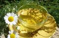 Picie rumianku wydłuża życie kobiet