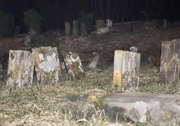Jest doniesienie ws. wyzywających zdjęć na cmentarzu