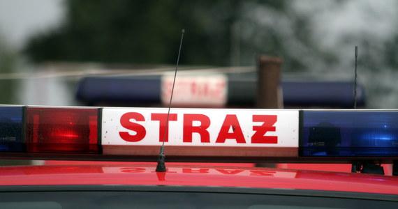 W miejscowości Dąbrówka-Stany w powiecie siedleckim na Mazowszu zakończyły się poszukiwania 2 chłopców w wieku 5 i 11 lat - dowiedzieli się dziennikarze RMF FM. Dzieci są całe i zdrowe.