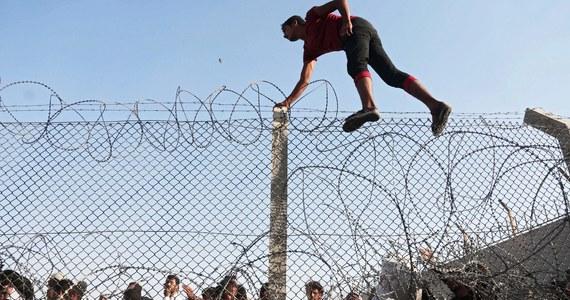 Chaos w rządzie w sprawie przyjęcia uchodźców wojennych z Syrii i Erytrei. Wczoraj w Luksemburgu - na spotkaniu ministrów spraw wewnętrznych Unii Europejskiej - Polska zadeklarowała przyjęcie dwóch tysięcy imigrantów. W piątek  rzecznik rządu Cezary Tomczyk precyzuje, że to wstępna deklaracja.