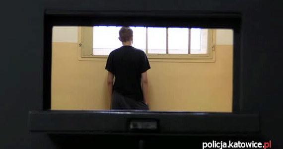 20-latek z Katowic usłyszał trzy zarzuty - m.in. posiadania i sprzedaży środków odurzających - i przyznał się do winy, a mimo to sąd nie zastosował wobec niego aresztu tymczasowego. Prokuratura zapowiada odwołanie. Mężczyźnie grozi do 10 lat więzienia. W województwie śląskim w ostatnich dniach dopalaczami zatruło się już 321 osób.