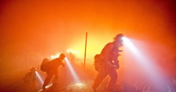 Ponad 60 samochodów i kilka domów spłonęło w pożarze, który trawi lasy i zarośla na północny wschód od Los Angeles, a w sobotę dotarł do międzystanowej autostrady. Kierowcy musieli porzucić swoje auta i uciekać pieszo. Ewakuowano również kilkuset okolicznych mieszkańców.