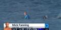 Australijski surfer zaatakowany przez rekiny