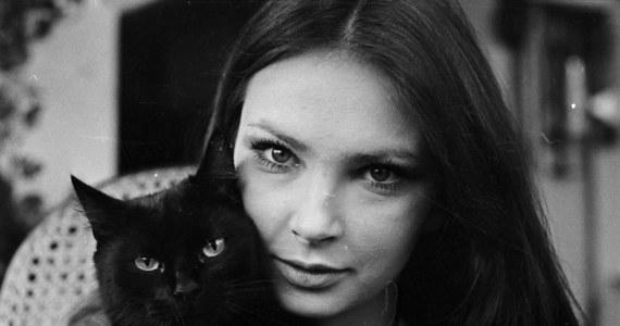 Znana polska aktorka filmowa i teatralna - Anna Dymna - świętuje dziś urodziny. Artystka kończy 64 lata.