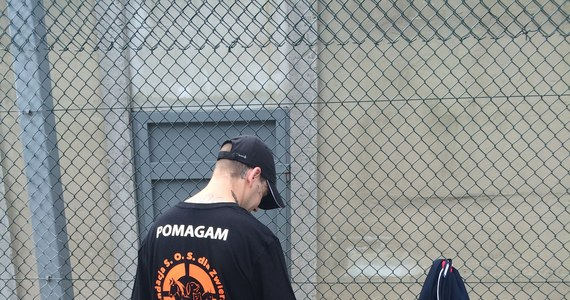 W Zakładzie Karnym w Wojkowicach prowadzony jest wyjątkowy program dla osadzonych. Ci, którzy odsiadują wyrok za znęcanie się nad zwierzętami albo przemoc domową  i w więzieniu… tresują psy. W ten sposób przygotowują zwierzęta do adopcji i sami uczą się, jak radzić sobie z agresją.