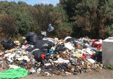 Slumsy w środku Europy. Tak żyją imigranci na obrzeżach Calais