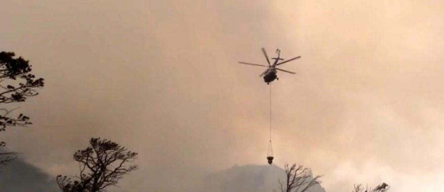 Na wschodzie Syberii rozprzestrzeniają się pożary lasów. Objęły już obszar 140 tys. hektarów; dzień wcześniej było to 120 tys. ha - poinformowały rosyjskie władze leśne. W akcji gaśniczej bierze udział ok. 6 tys. strażaków, wspieranych m.in. przez samoloty.