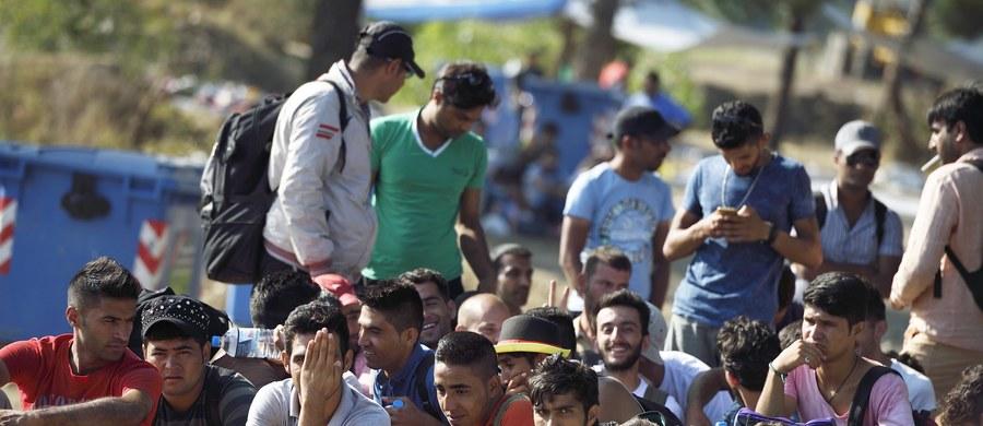 Fala imigrantów wciąż napływa w stronę Węgier z Serbii. Dziś padł nowy rekord - na granicy znalazło się 3 241 osób. Wśród uchodźców, głównie z Syrii, Afganistanu i Pakistanu, znalazło się niemal 700 dzieci.