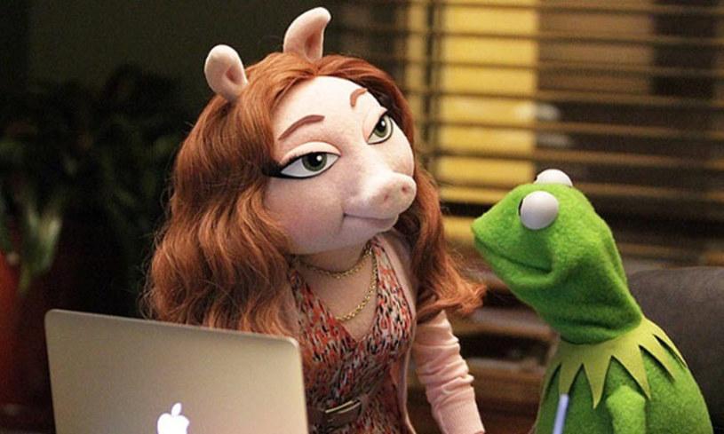 Na początku sierpnia najpopularniejsza na świecie para maskotek ogłosiła rozstanie. Wciąż jednak łączą ich sprawy zawodowe, zatem regularnie się spotykają. Mimo to Kermit bardzo szybko znalazł sobie nową sympatię.