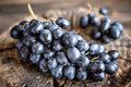 Sezon na krajowe winogrona
