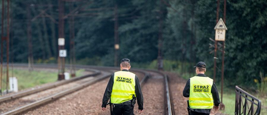 """Stowarzyszenie Dolnośląska Grupa Badawcza wykluczyło swoich dotychczasowych członków Piotra Kopra i Andreasa Richtera. To ci mężczyźni twierdzą, że wiedzą, gdzie znajduje się """"złoty pociąg""""."""