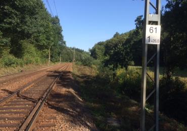 """Poszukiwania """"złotego pociągu"""" wymagają przygotowania terenu"""