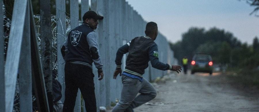 W ciągu ostatniej doby na granicę serbsko-węgierską dotarło ok. 5 tysięcy imigrantów, w tym uchodźcy z Bliskiego Wschodu uciekający przed konfliktami. To rekord - podała państwowa serbska telewizja RTS.
