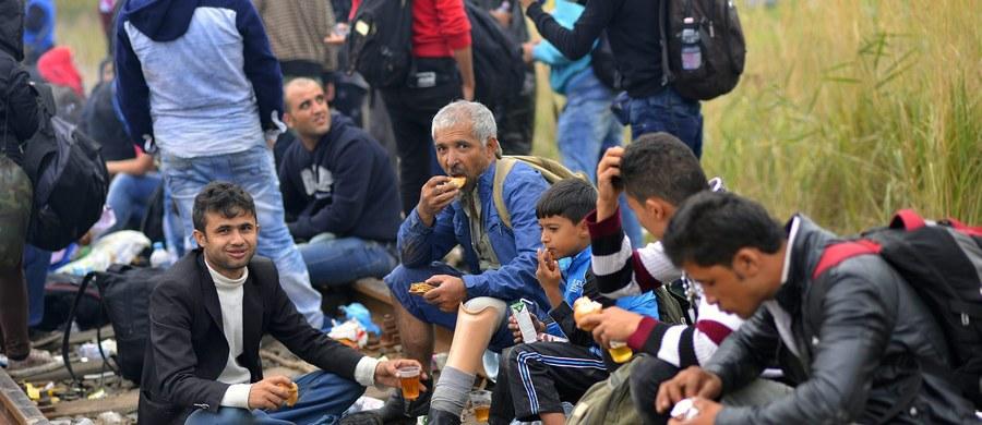 Rząd powinien się skupić na walce o kształt stałego mechanizmu rozdziału azylantów, a nie na tym, czy doraźnie mamy ich przyjąć 9 czy 11 tysięcy.
