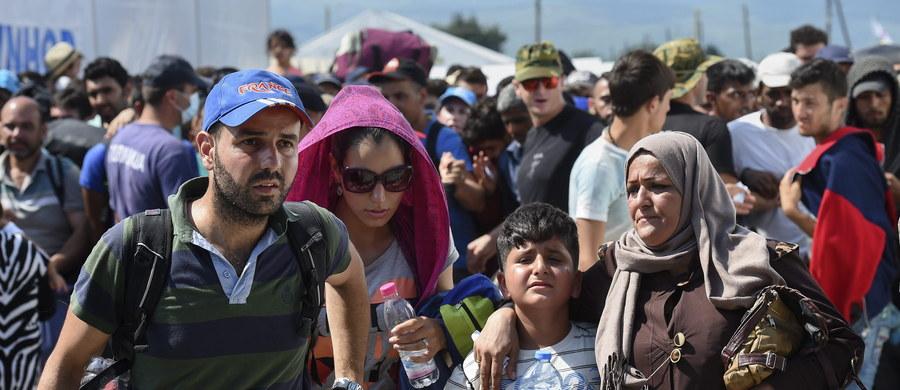 Są sygnały, że uchodźcy mogą próbować dostać się do Niemiec przez Polskę pod plandekami ciężarówek. Jak ustalił nasz reporter Paweł Balinowski, Inspekcja Transportu Drogowego ma dokładniej sprawdzać takie pojazdy pod kątem przewozu imigrantów.