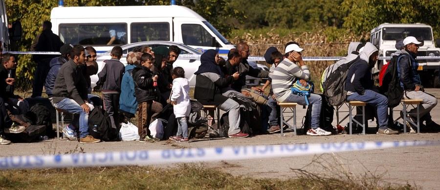 """Polscy przewoźnicy płacą wysokie kary za nielegalnych imigrantów, którzy włamują się do ciężarówek. Zdarza się, że muszą też utylizować przewożoną żywność - pisze """"Dziennik Gazeta Prawna""""."""