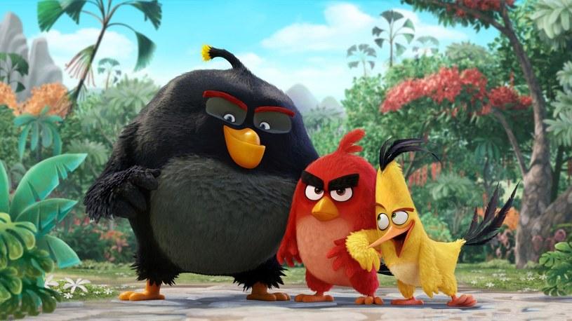 """Na premierę animacji """"Angry Birds Film"""" musimy poczekać do końca maja 2016; dystrybutor obrazu, UIP, zaprezentował już jednak polski zwiastun filmu."""