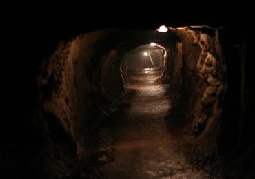 Skarby na Dolnym Śląsku. Niezwykłe odkrycie pod świątynią w Jędrzychowie