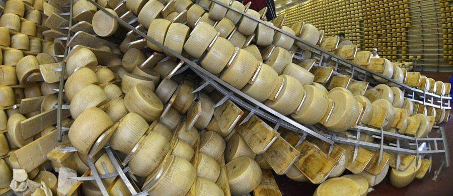 Parmezan jest najczęściej kradzionym i podrabianym serem na świecie - takie są dane organizacji włoskich rolników Coldiretti. Ogłoszono je po tym, gdy na północy Włoch policja rozbiła gang, który ukradł ponad 2 tysiące form sera ważących po ok. 30 kilogramów.