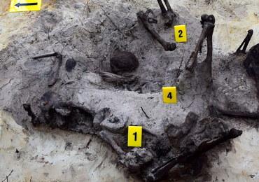 Świadek egzekucji ofiar komunistycznego terroru wskazał miejsce w lesie pod Ostrołęką