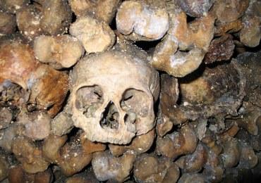 Halloween: Darmowy nocleg wśród milionów czaszek w paryskich katakumbach