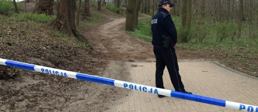 Prokuratorzy z Gdańska najpewniej wystąpią o uzupełniającą opinię z badań psychiatrycznych Mariusza L. Chodzi o mężczyznę, który w kwietniu w nadmorskim parku brutalnie zamordował 5-letnią córeczkę. Jeśli okaże się, że był wtedy niepoczytalny, może nie trafić do więzienia.