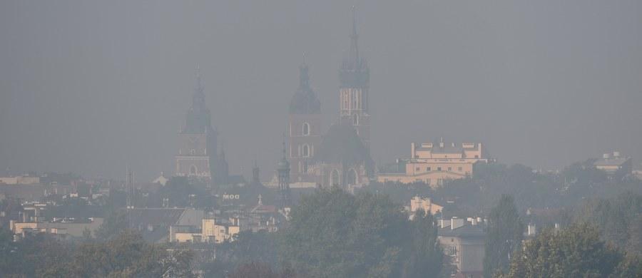 Unikajcie wychodzenia na spacery – radzą władze Krakowa w liście wysłanym do dyrektorów przedszkoli i szkół. Powodem jest utrzymujący się od kilku dni smog. W Krakowie obowiązuje drugi stopień zagrożenia – co oznacza, że normy zanieczyszczenia powietrza przekroczone są czterokrotnie.