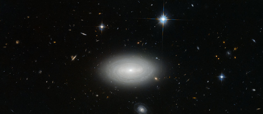 Czy uwierzycie, że na tym zdjęciu są tylko trzy gwiazdy? To te, wokół których widać tak zwane szpilki dyfrakcyjne. Wszystkie pozostałe widoczne na fotografii obiekty to galaktyki. Choć jest ich tak dużo, położona w centrum galaktyka MCG+01-02-015 jest... najbardziej samotnym znanym nam obiektem tego typu we Wszechświecie. Jej zdjęcie, wykonane przez teleskop Hubble'a, opublikowała właśnie Europejska Agencja Kosmiczna.